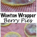 wontonwrapperpies100