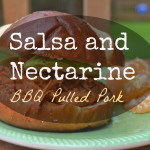 Salsa and Nectarine BBQ Pulled Pork