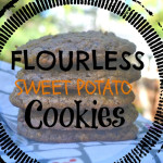 Sweet Potato Flourless Cookies