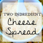 Two-Ingredient Cheese Spread