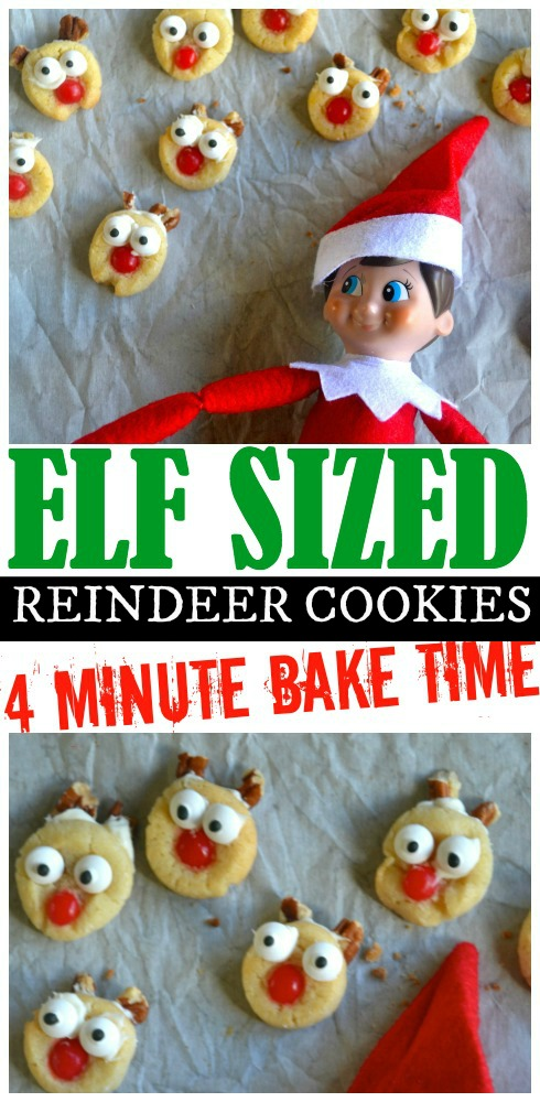 elf-on-the-shelf-raindeer-cookies