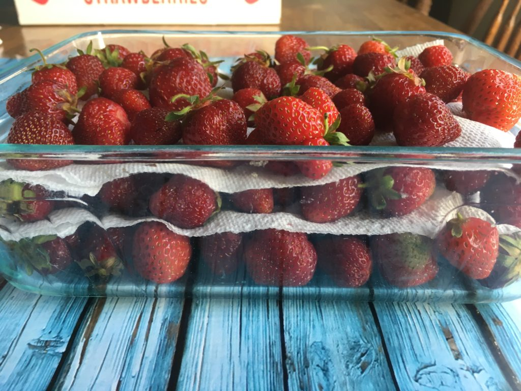 pictures How to Store Strawberries