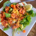 Salsa Shrimp Salad