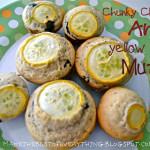 Chunky Chocolate Yellow Squash Muffins