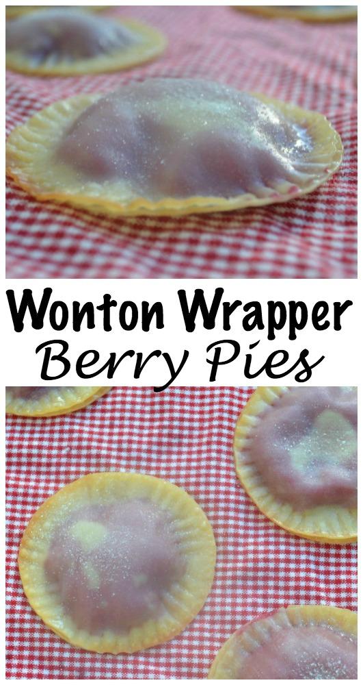 wontonwrapperpies100