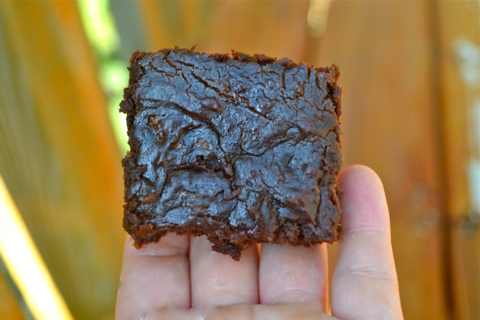 brownies10