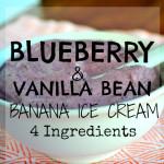 Blueberry-Vanilla Bean Banana Soft Serve