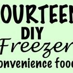 14 DIY Freezer Convenience foods