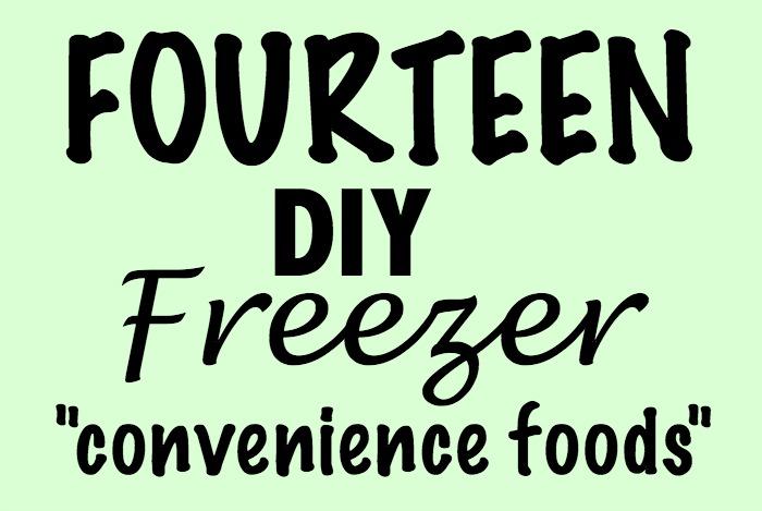 freezerfoods1