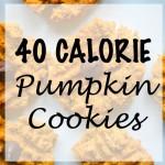 40 Calorie Pumpkin Cookies