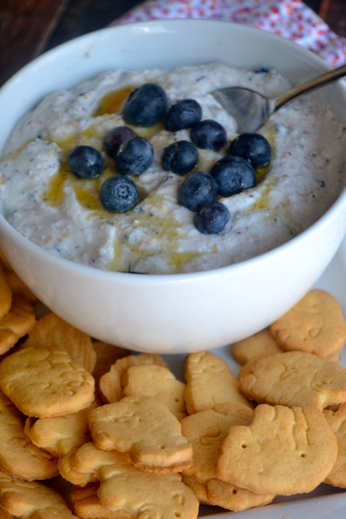 Blueberry Muffin Ricotta Dip 01