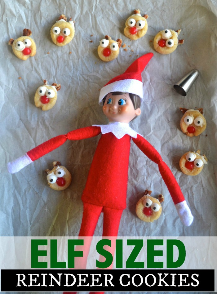 elf-sized-cookies232