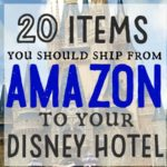 Twenty things you should ship from Amazon to your Disney hotel